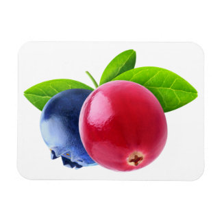 Two berries magnet