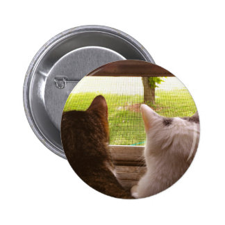 Two BFF Cats Gazing Out of The Window Button