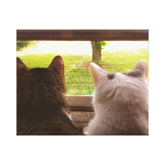 Two BFF Cats Gazing Out of The Window Canvas Print