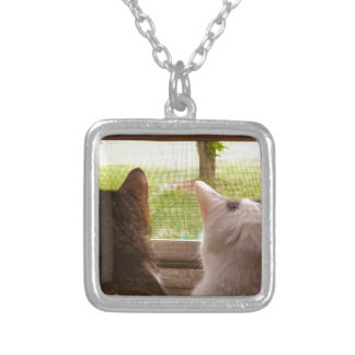 Two BFF Cats Gazing Out of The Window Silver Plated Necklace