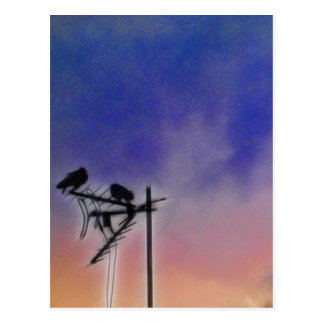Two Birds at Sunset Postcard