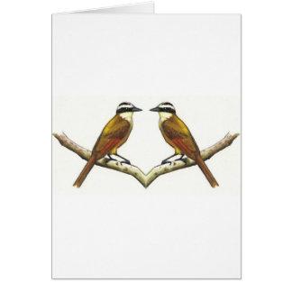 Two Birds Facing: Kiskadees in Color Pencil Card