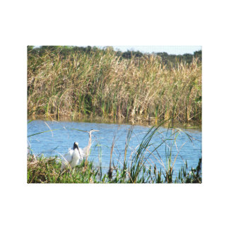 Two Birds in the Swamp Canvas Print