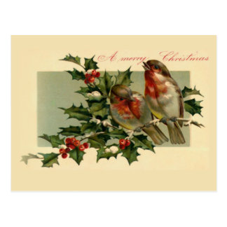 Two birds on a Holly branch Postcard