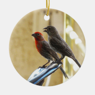 Two birds One looks like he's talking Double-Sided Ceramic Round Christmas Ornament