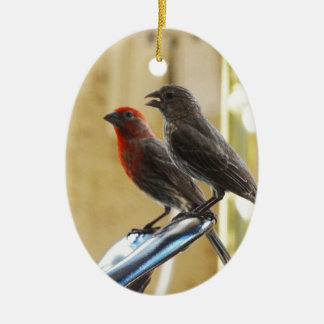 Two birds One looks like he's talking Double-Sided Oval Ceramic Christmas Ornament