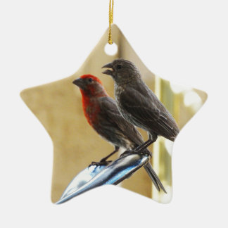 Two birds One looks like he's talking Double-Sided Star Ceramic Christmas Ornament