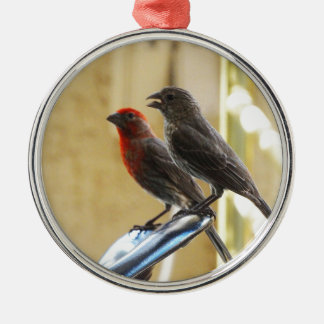 Two birds One looks like he's talking Round Metal Christmas Ornament
