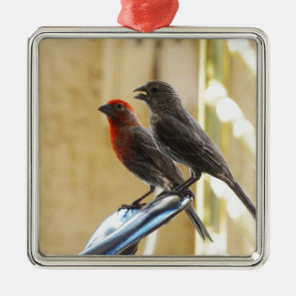Two birds One looks like he's talking Square Metal Christmas Ornament