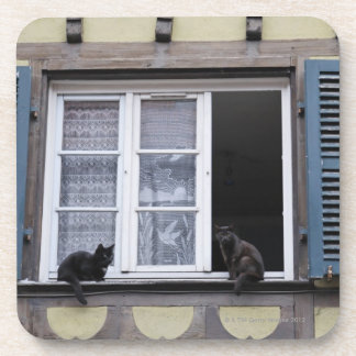 Two Black Cats at Window Coaster