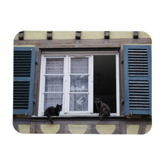 Two Black Cats at Window Rectangular Photo Magnet