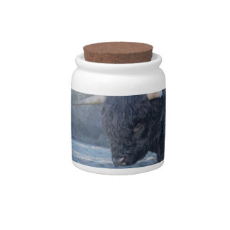 Two black scottish highlanders in frozen meadow candy jar