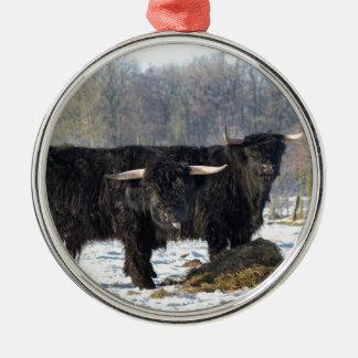 Two black scottish highlanders in winter snow metal ornament