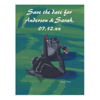 Two Black Swans Swimming Save the Date Postcards
