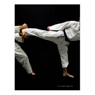 Two Blackbelts Sparring 2 Postcard