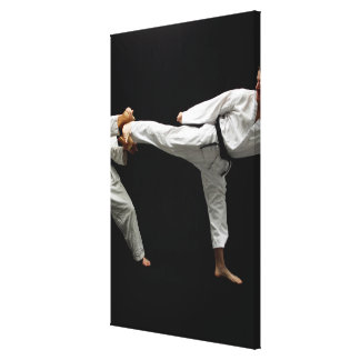 Two Blackbelts Sparring Canvas Print