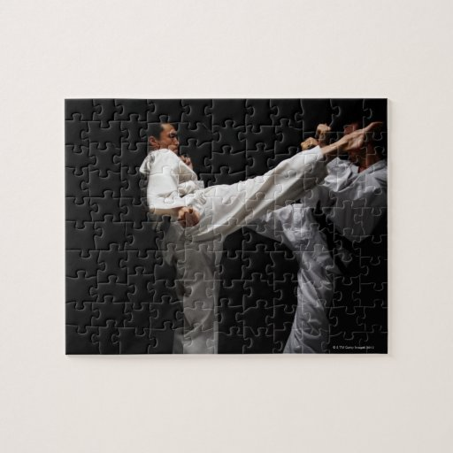 Two Blackbelts Sparring Puzzle