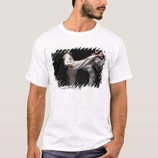 Two Blackbelts Sparring T-Shirt
