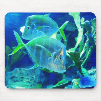 Two Blue Fish Mousepads