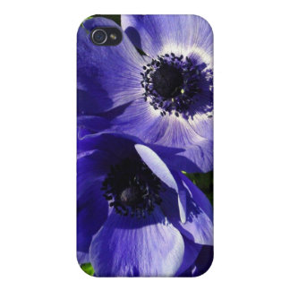 Two Blue Mauve Anemone - Close Up Windflowers Cover For iPhone 4