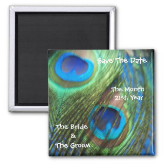 Two Blue Peacock Feathers Wedding Save the Date 2 Inch Square Magnet