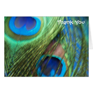 Two Blue Peacock Feathers Wedding Thank You Cards