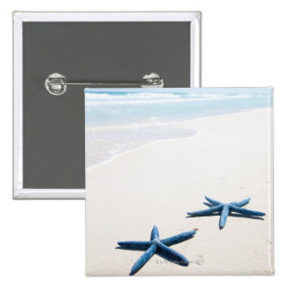 Two blue starfish at water s edge on tropical pinback button