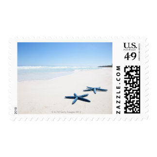 Two blue starfish at water's edge on tropical 2 postage