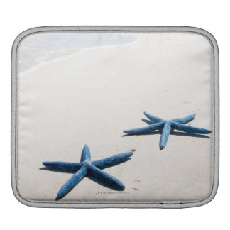 Two blue starfish at water's edge on tropical iPad sleeve