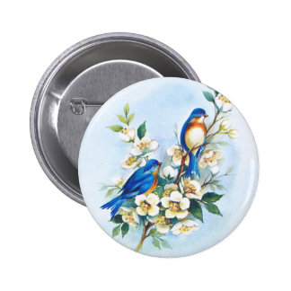 Two Bluebirds Pins