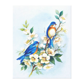 Two Bluebirds Canvas Print