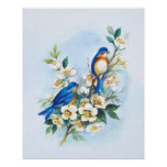 Two Bluebirds Poster