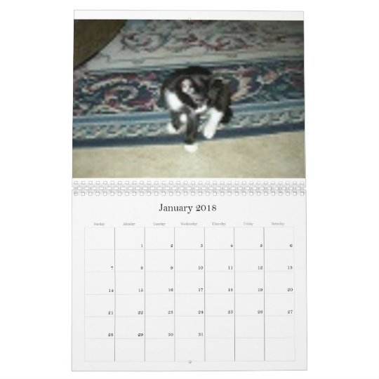 Two Bobtail Cats Named Jacob and Sasha Calendar