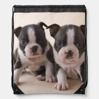 Two Boston Terrier Puppies Drawstring Bag