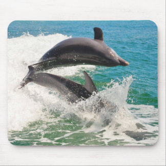 Two Bottlenose Dolphins Jumping Together Mousepad