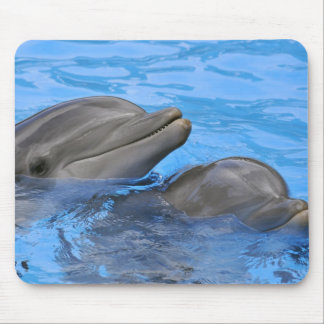 Two bottlenose dolphins mouse pad