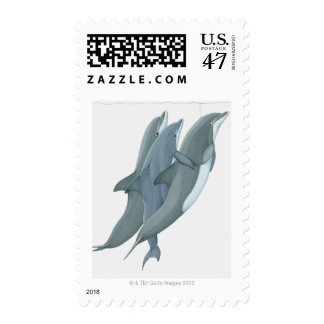 Two Bottlenosed Dolphins Postage
