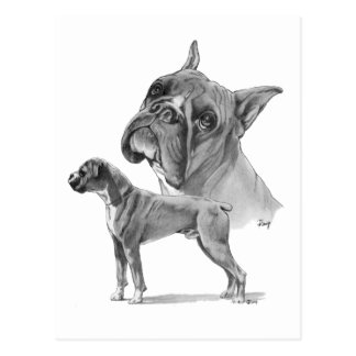 Two Boxer Dogs Post Cards
