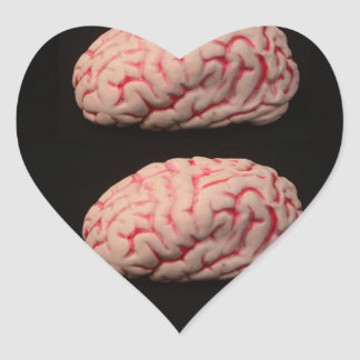 Two Brains are Better than One Heart Sticker