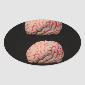 Two Brains are Better than One Oval Stickers
