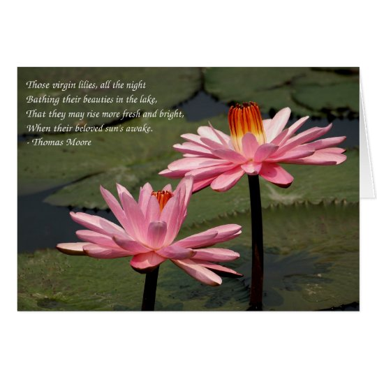 Two Bright Pink Water Lilies Card