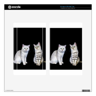 Two british short hair cats on black background decals for kindle fire