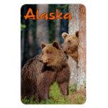Two brown bears flexible magnet