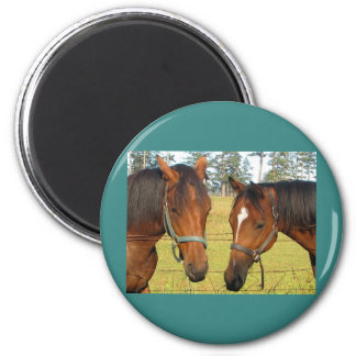 Two Brown Horses In A Field, Thoughtful Horses 2 Inch Round Magnet