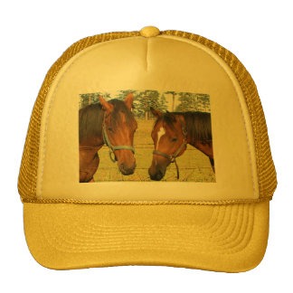 Two Brown Horses In A Field, Thoughtful Horses Hat