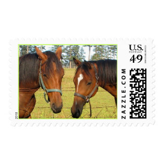 Two Brown Horses in Deep Horse Thought Postage
