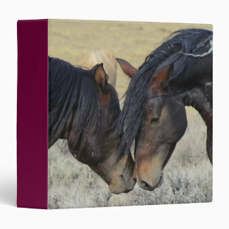 Two Brown Wild Horses Nuzzling Binder