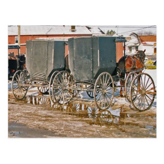 Two Buggies In Puddle Postcard
