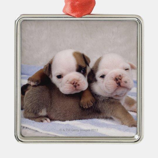 Two bulldog puppies on towel metal ornament