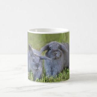 Two bunnies mug
